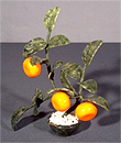 Бонсай с 3 мандаринами F-460