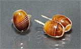 Гарнитур серьги+кольцо агат, мельхиор 17х13 мм