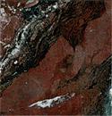 Образец камня-криноидный известняк-темный